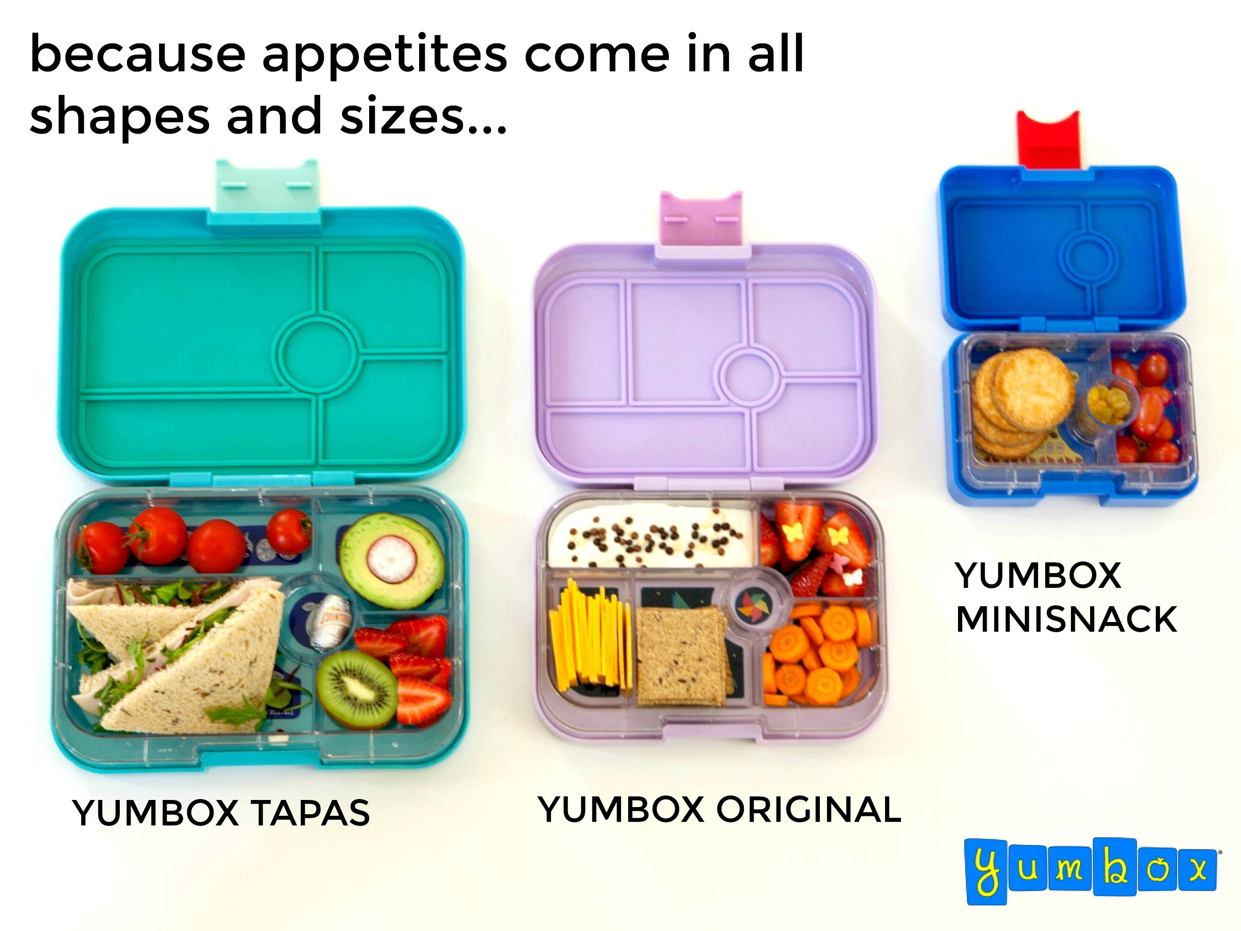 galleon yumbox tapas larger size portofino blue leakproof bento lunch box for adults teens. Black Bedroom Furniture Sets. Home Design Ideas