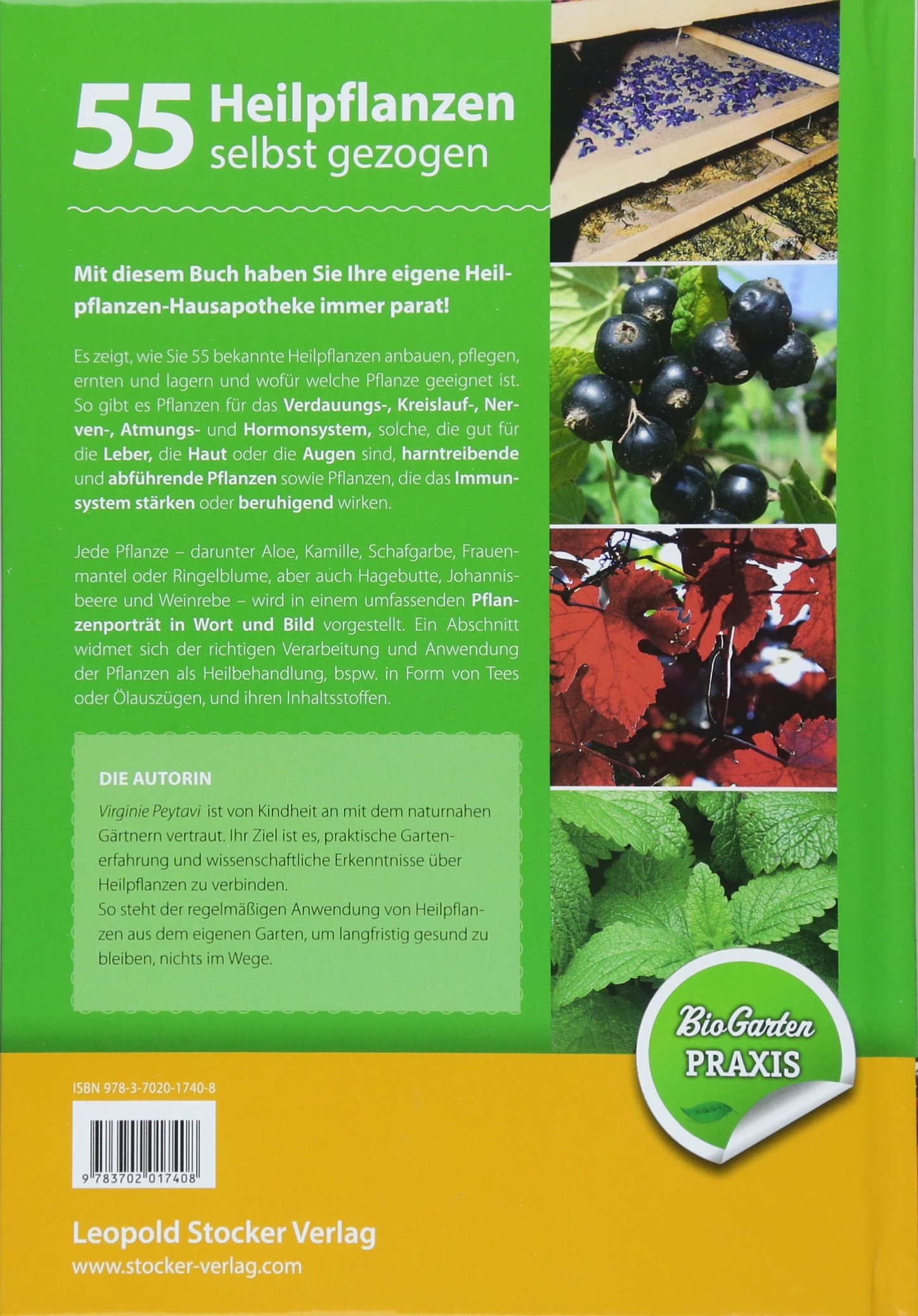 55 Heilpflanzen selbst gezogen: Anbau, Pflege, Verwendung, Bio ...