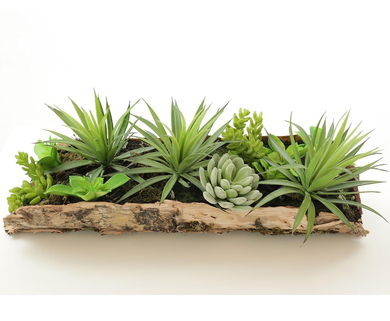Künstliche Sukkulenten Arrangement in Echtholz Rinde, 43 x 16cm - künstliche Pflanzen Kunstpflanzen Dekopflanzen
