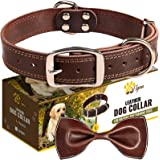 ADITYNA Leather Dog Collar for Large Dogs - Heavy Duty Wide Dog Collars with Durable Metal Hardware & Double D-Ring - (L: 1,2