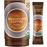 ShroomDNA Mushroom Coffee Blend with Cordyceps + Chaga   Instant Focus + Clarity All Day   Organic + Vegan + Gluten Free   No