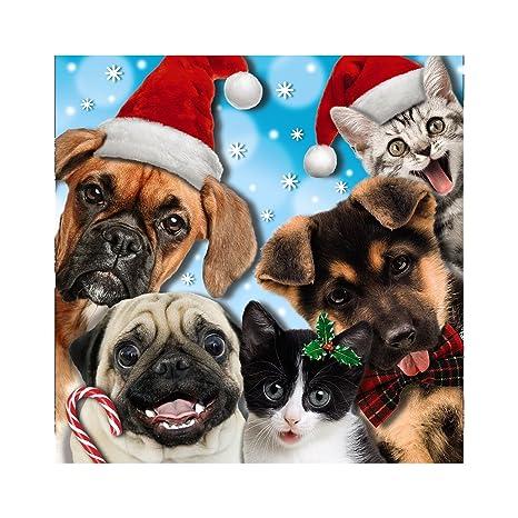 Auguri Di Buon Natale Ufficio.Me To You Up Close 3d Biglietto Di Auguri Di Buon Natale Gatti E