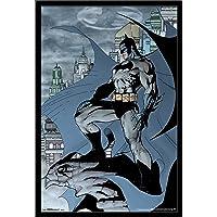 Trends International Batman Cabo
