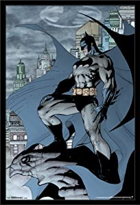 "Trends International Batman Cape, 22.375"" x 34"""