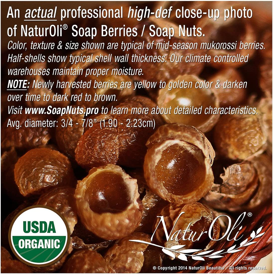NaturOli Overstock Sale Organic Soap Nuts Soap Berries Pieces – Ten POUNDS 2000 Loads – Seedless USDA Certified – Fresh Wild Harvest – Hypoallergenic, Non-Toxic