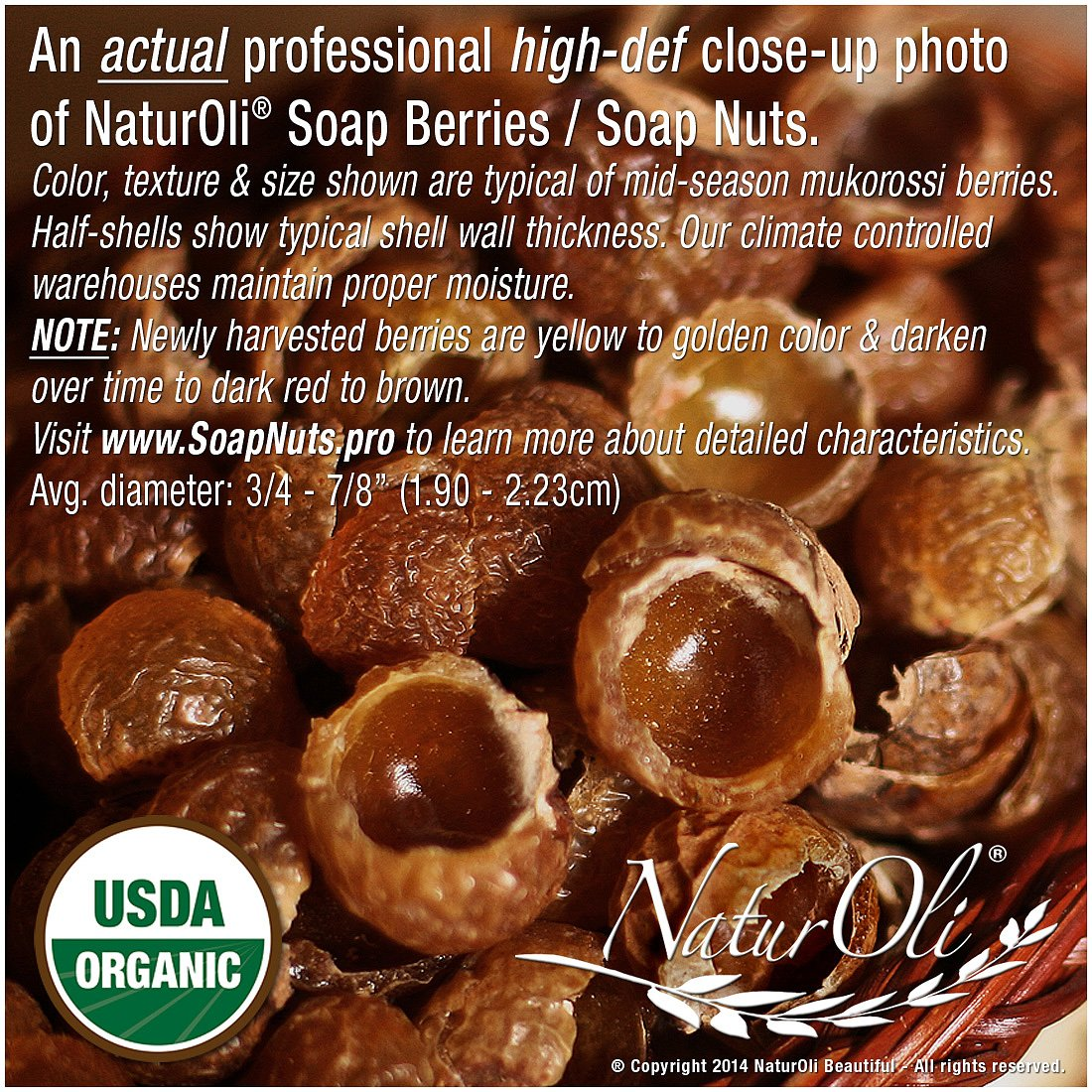 OVERSTOCK SALE!! NaturOli Organic Soap Nuts/Soap Berries PIECES/BULK - FIVE POUNDS (1000+ Loads) Seedless USDA Certified - Fresh Wild Harvest - Hypoallergenic, Non-toxic by NaturOli (Image #2)