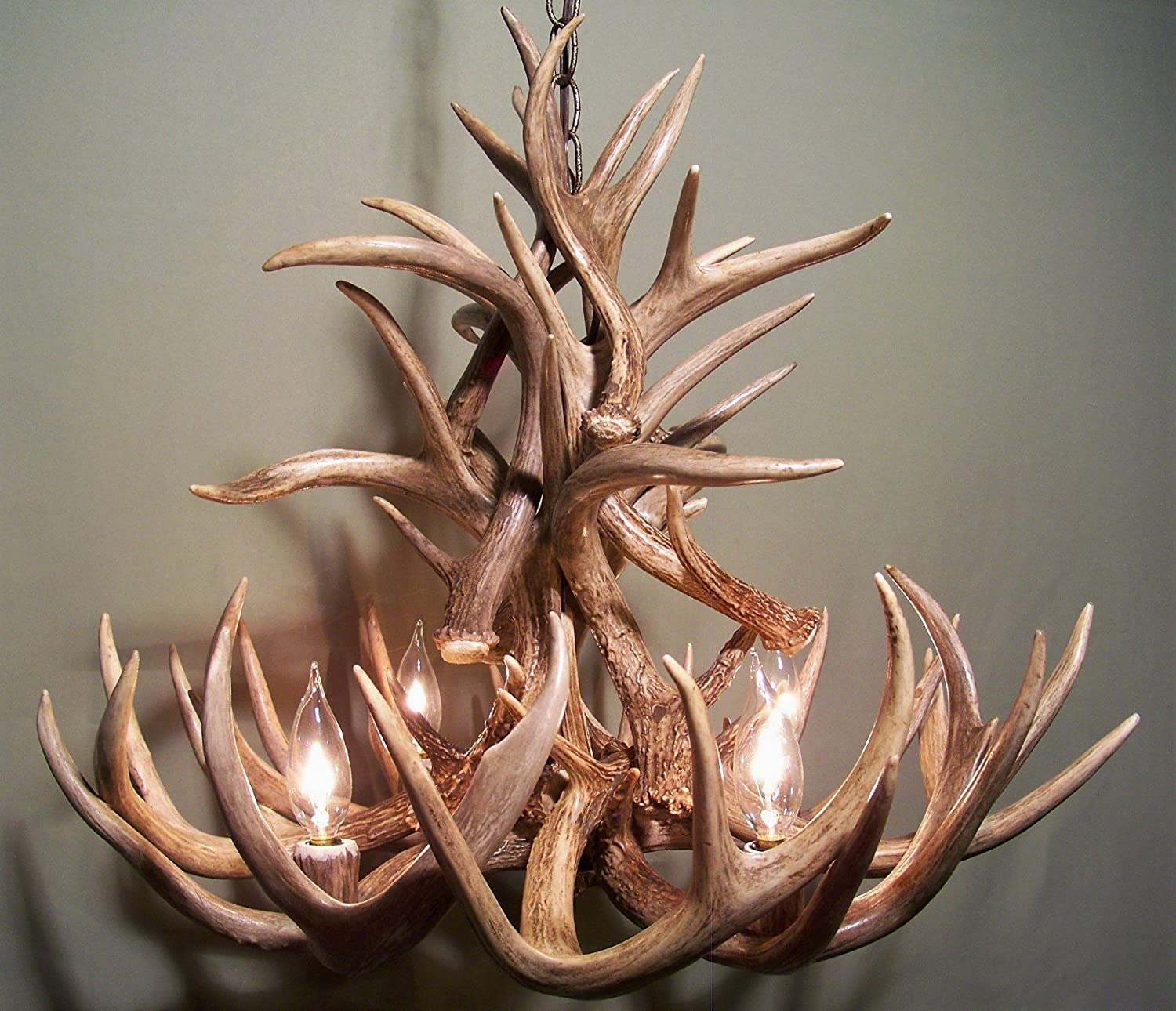 Amazon REAL WHITETAIL DEER ANTLER CHANDELIER 4 LIGHTS SHED