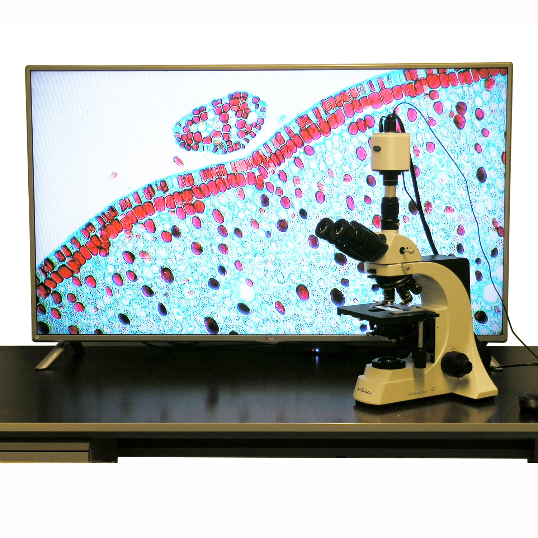 1920x1080 Full HD HDMI Microscope Camera