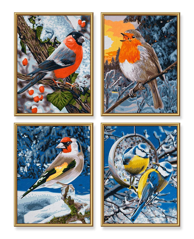 Quattro Paint by Number Schipper 609340661 Winter Birds Multicolor