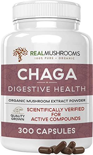 Chaga Extract Mushroom Supplement 300 caps, 500mg Organic Chaga Mushroom Powder Capsules, Antioxidant Immune System Booster, Vegan Non-GMO Chaga Sclerotium Mushroom Extract, No Fillers