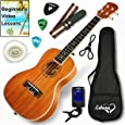 Ukulele Concert Size Bundle From Lohanu (LU-C) 2 Strap Pins Installed FREE Uke Strap Case Tuner Picks Hanger Aquila Strings Installed Free Video Lessons BEST UKULELE BUNDLE DEAL Purchase Today!