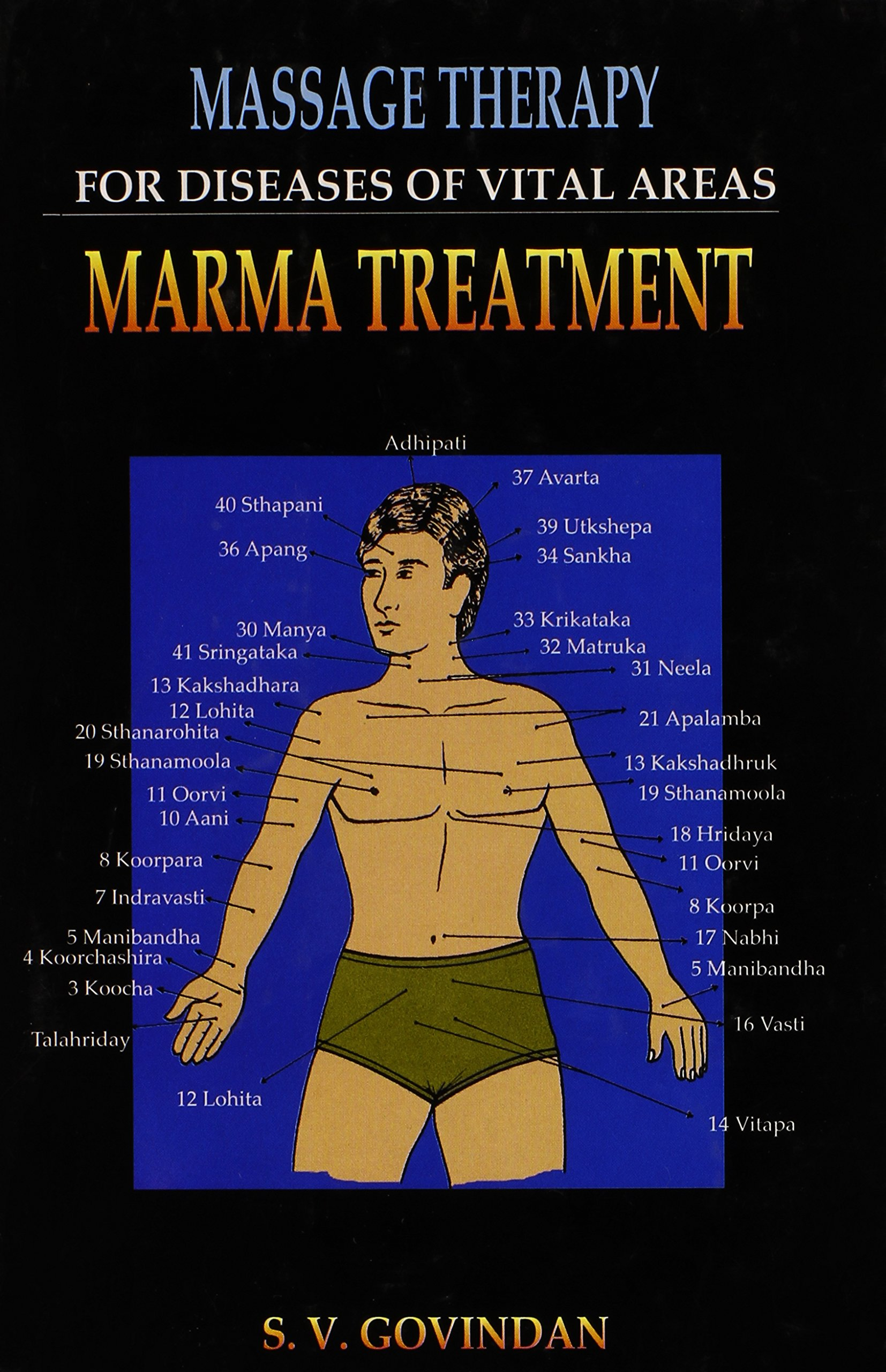 Download Massage Therapy for Diseases of Vital Areas: Marma Treatment pdf epub