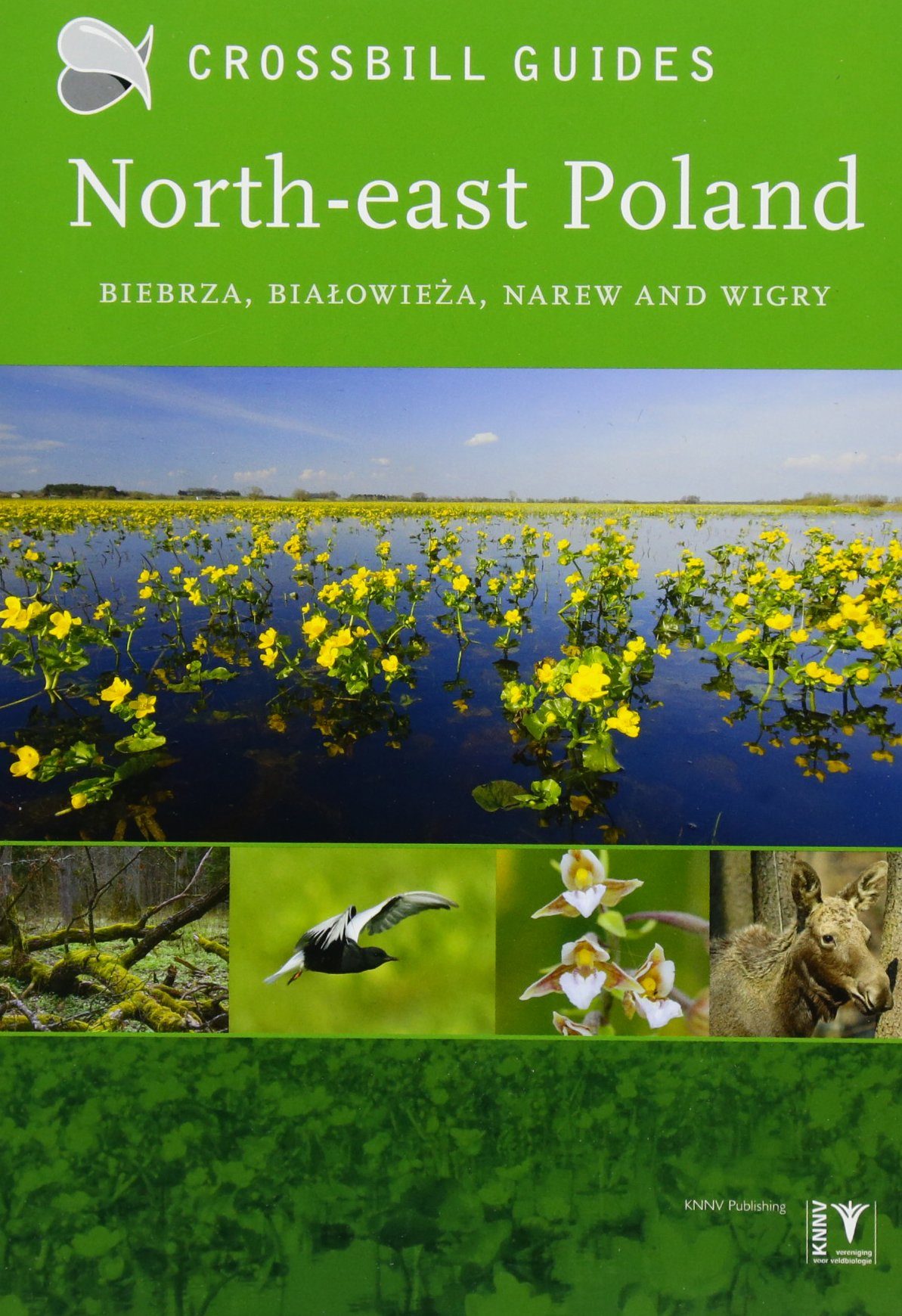 North-East Poland: Biebrza, Bialowieza and Wigry (Crossbill Guides, Band 13)