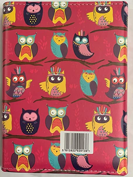 2020 OWL A5 DAY TO PAGE INDEXED AND TIMES WITH PEN BUTTON CLOSE  DIARY TALLON