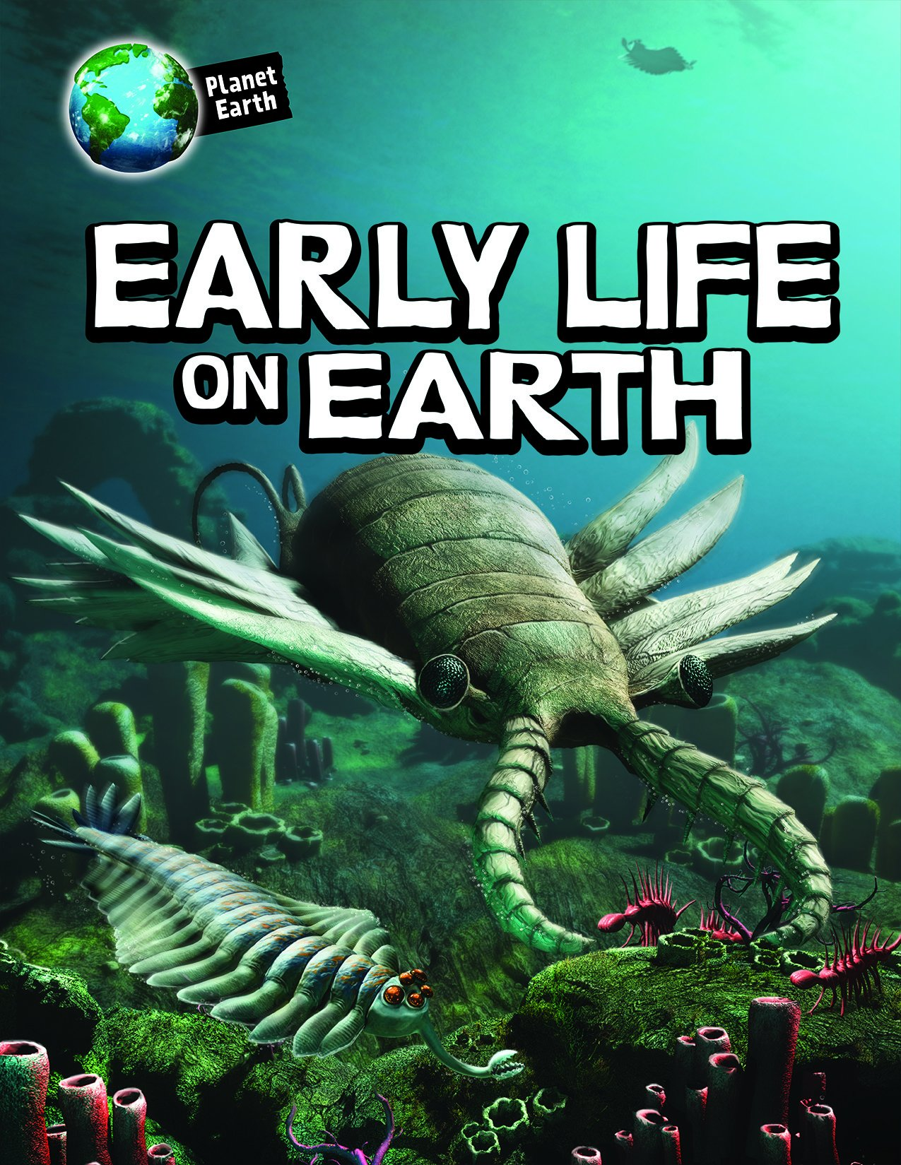 Early Life on Earth (Planet Earth)