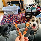 Amazon.com : Good'N'Fun Triple Flavored Rawhide Kabobs For