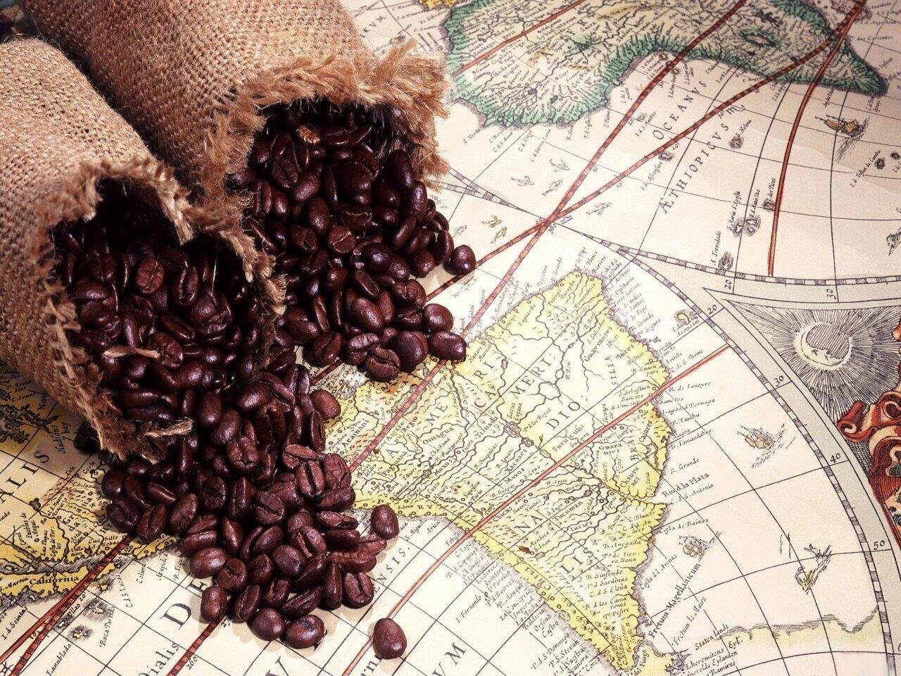 Peru Approcassi Cajamarca Fair Trade Shade Grown Organic Coffee Beans (Medium Roast (Full City +), 15 Pounds Whole Beans) by RhoadsRoast Coffees (Image #9)