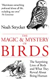 The Magic & Mystery of Birds: The Surprising Lives of Birds and What They Reveal About Being Human