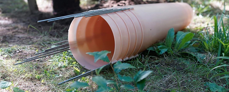 Tree Sentry Seedling Shelter (10)