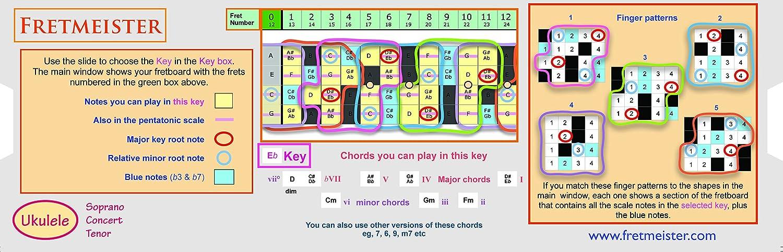 fretmeister para ukelele - desarrollar tus habilidades con acordes ...
