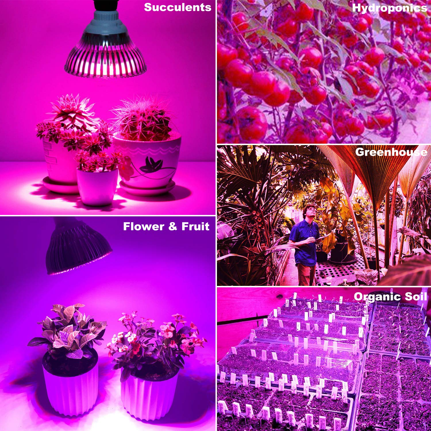 Led Plant Bulb for Flower Garden Greenhouse and Organic Soil 100W E26 LED Plant Grow Light Bulb Full Spectrum for Indoor Plants Hydroponics Vegetables and Seedlings Growing