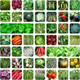 ONLY FOR ORGANIC 45 Variety Of Vegetable Seeds With Instruction Manual-Best-Popular-Product