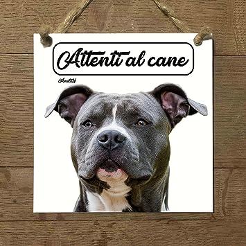 amstaff American staffordshire Terrier Mod 3 cuidado con el ...