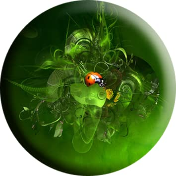 Amazon Ladybug Wallpaper Appstore For Android