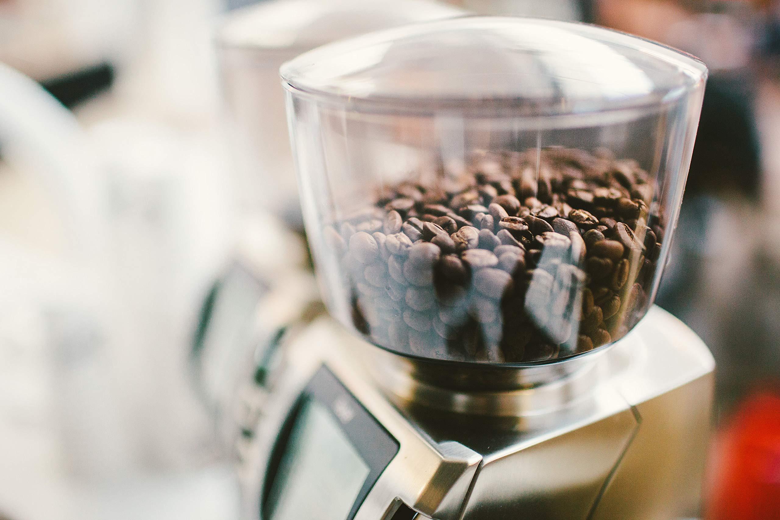 Baratza Forte BG (Brew Grinder) Flat Steel Burr Commercial Coffee Grinder by Baratza