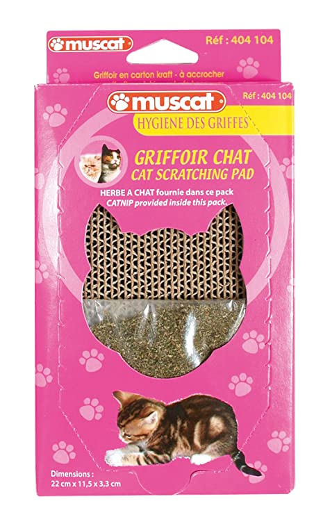 griffoir chat muscat