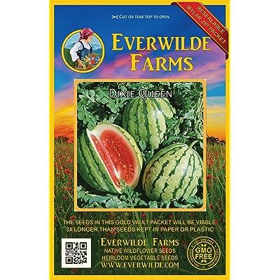 Verazui 40 Dixie Queen Watermelon Seeds - : Garden & Outdoor