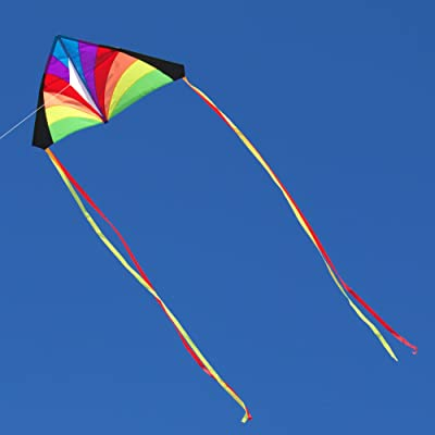 Into The Wind Rainbow Kid's Delta Kite: Toys & Games