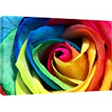 MOOL Large 32 x 22-inch Colourful Rose Canvas Wall Art Print Hand Stretched on a Wooden Frame with Giclee Waterproof Varnish Finish Ready to Hang