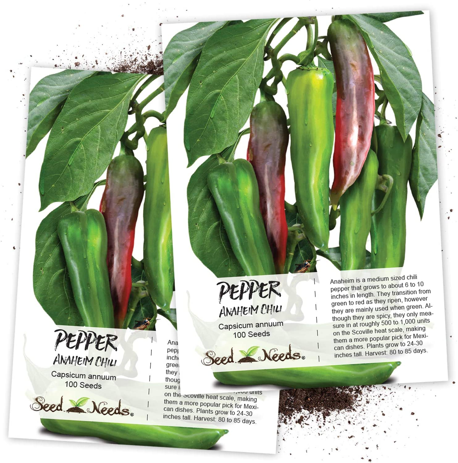 Amazon Com Seed Needs Anaheim Hot Pepper Capsicum Annuum Twin Pack Of 100 Seeds Each Non Gmo Vegetable Plants Garden Outdoor