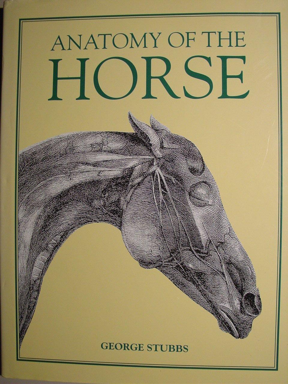 Anatomy Of The Horse George Stubbs 9780831780432 Amazon Books