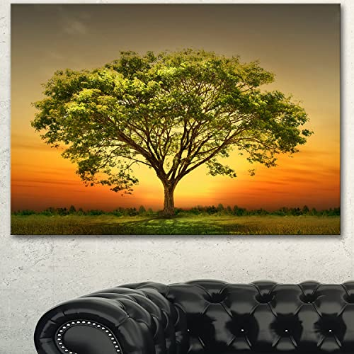 Designart Green Setting Sun Trees Canvas Wall Art