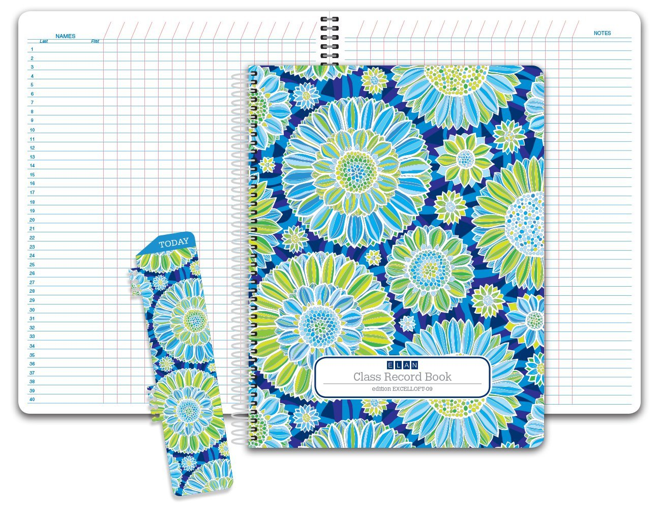 Class Record Book Unstructured...set it up to record grades your way! 40 student names (Excello - Green Blue Flowers)