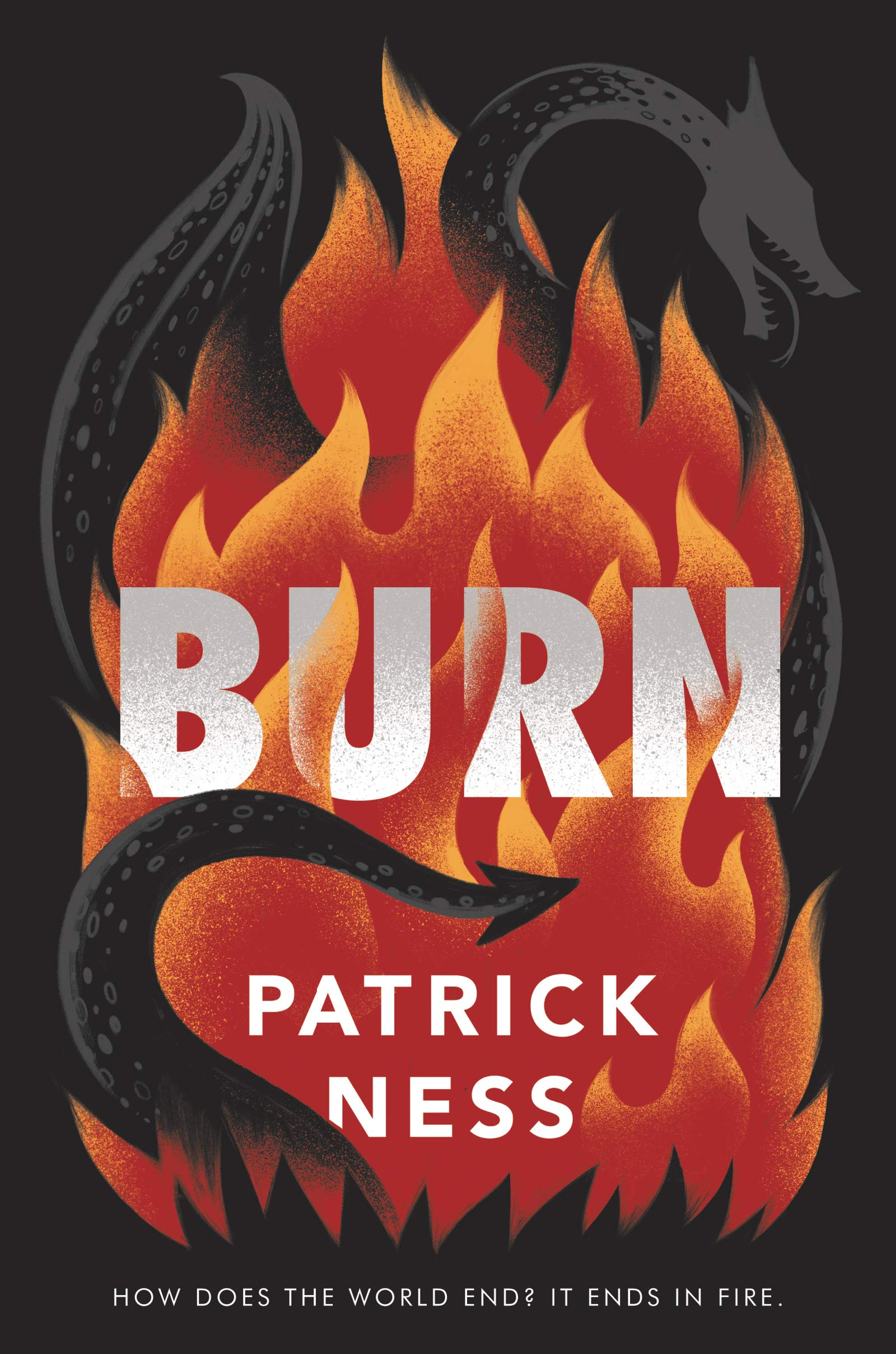 Amazon.com: Burn (9780062869494): Ness, Patrick: Books
