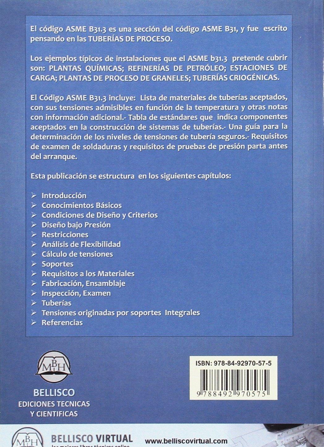 Normas de construcción de tuberías de proceso: Juan Manuel Martínez Massoni: 9788492970575: Amazon.com: Books