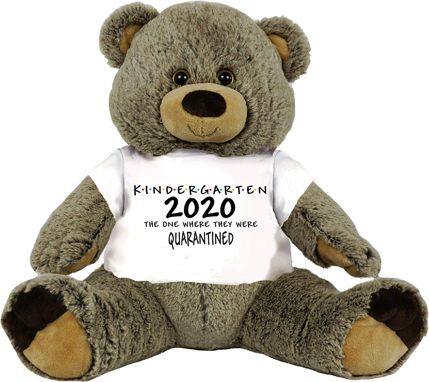 PaperGala Choose Class of 2020 Kindergarten or Other Quarantined Student Gift Graduation Personalized 16 Teddy Bear Choose Bear Colors Personalized Name