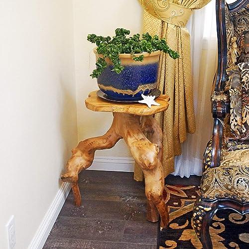 WELLAND Tree Stump Side Table