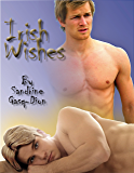 Irish Wishes (Assassin/Shifter Book 12)