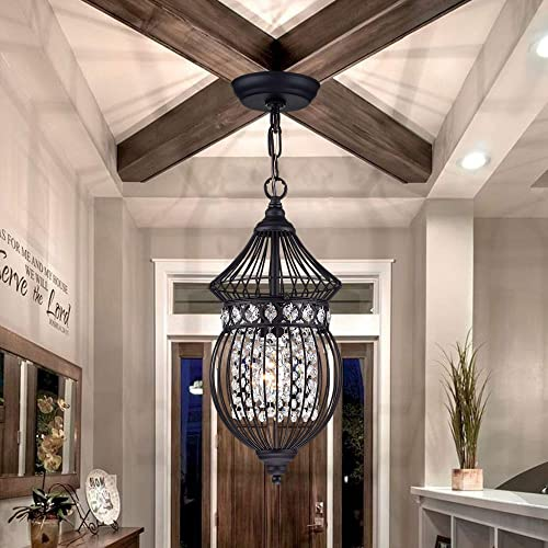 Black Chandeliers Globe Crystal Chandelier Lighting Farmhouse Lighting Fixtures 1 Light 17045