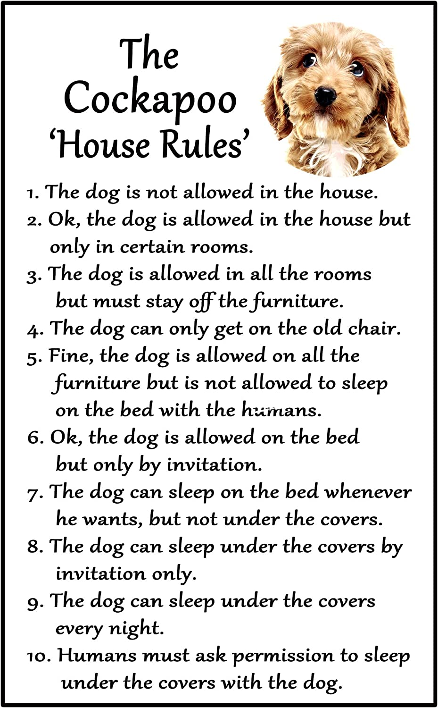 Fridge magnet made Dog /& fun humour words U.K COCKAPOO perfect gift