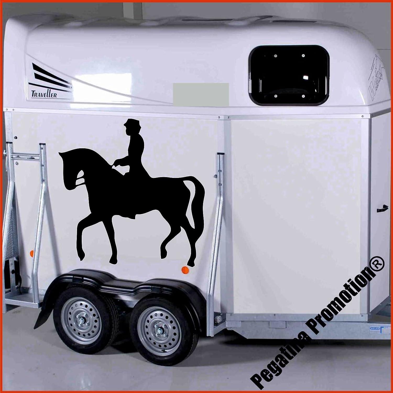 Dressurreiter auf Dressurpferd Aufkleber Anhänger Pferd Anhänger ca. 80x60cm Pegatina Promotion ®