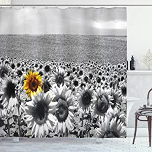 Ambesonne Modern Shower Curtain Sunflower Field Black And White A Single Yellow Flower Spring Landscape Individuality Cloth Fabric Bathroom Decor Set With Hooks 70 Long Grey Home Kitchen Amazon Com