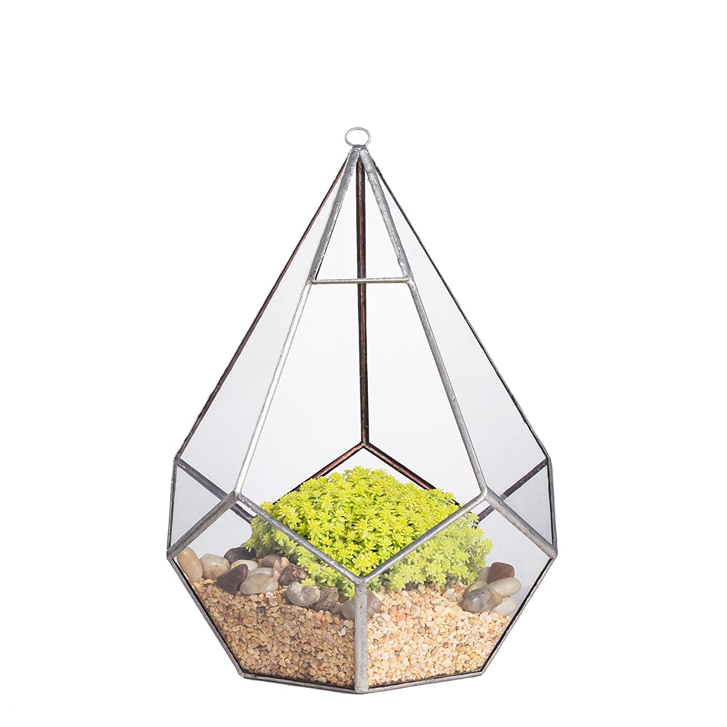 1 Face Opening Modern Hanging Geometric Polyhedron Diamond Teardrops Shape Clear Glass Plant Terrarium Planter (5 Faces Triangle with 6 Faces Pentagon) 6.8 x 6.8 x 8.6inches (9inches with loop) Sliver NCYP 20160220005_MY