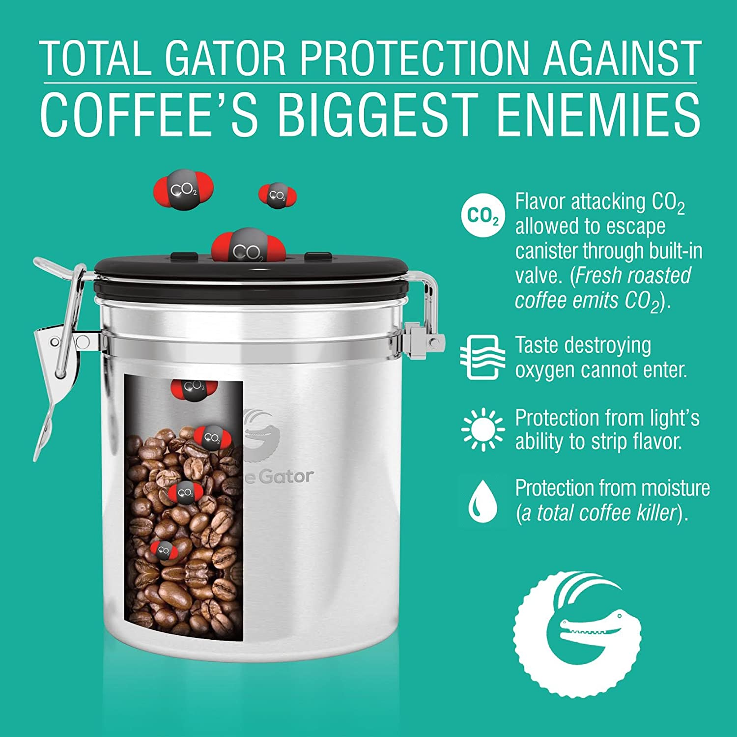 Amazon.com: Coffee Gator Stainless Steel Container - Canister with ...