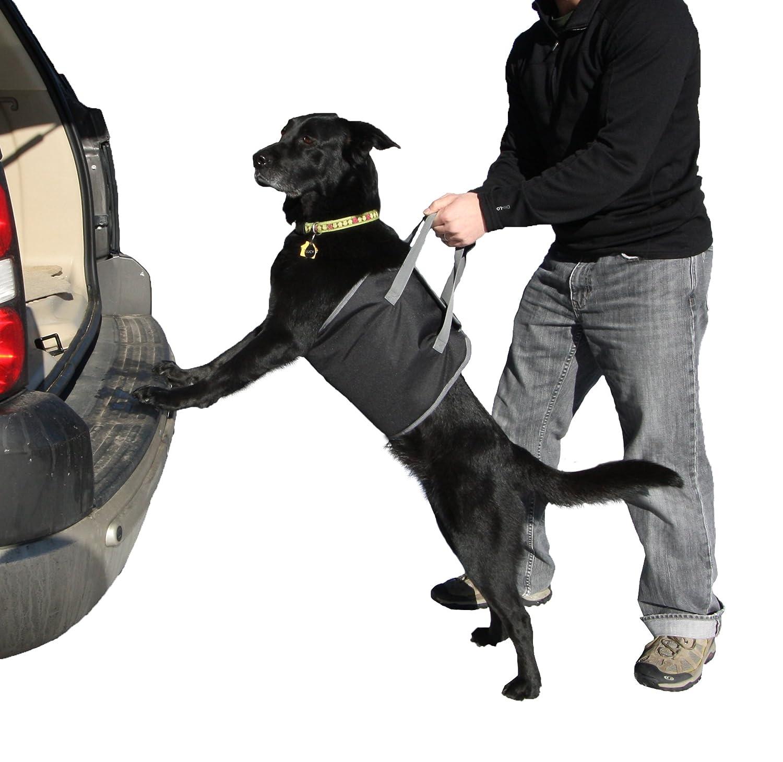 Outward Hound Kyjen PupBoost Lift Harness Dog Auto Velcro Lift