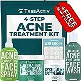 TreeActiv 4-Step Acne Treatment Kit   Sulfur Face Wash Exfoliant, Salicylic Acid Toner Spray, Tea Tree Zit Cream Facial Moist